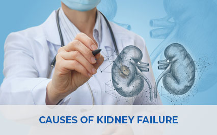 What Are The Various Causes Of Kidney Failure